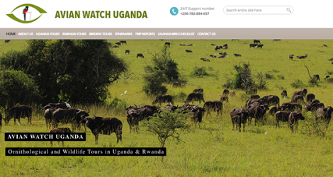 Avian Watch Uganda